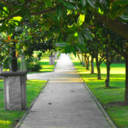 insecticida de exteriores